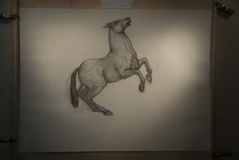 Charcoal Horse Feb 2017